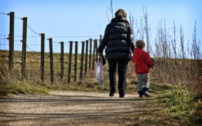 Child Support Change of Assessment – The Outcome